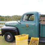 Vineyard Truck