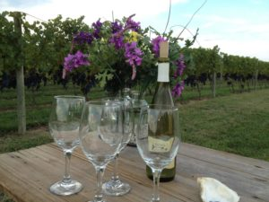 Wine and wine glasses in a vineyard on the Chesapeake Bay